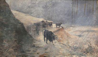 Ecole du XIXe siècle  Les bœufs.  Huile sur...
