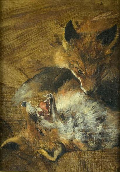 Ecole du XIXe siècle  Etude de loups.  Huile...