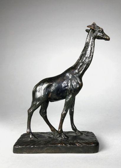 Alfred BARYE (1839-1882)  La girafe.  Epreuve...