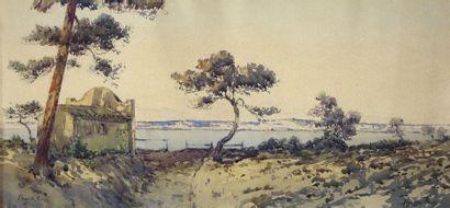 Alphonse REY (1863 - 1938)
