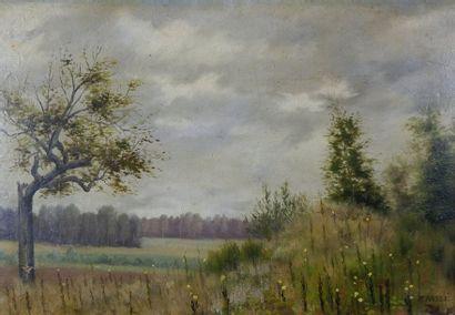 M. PASSE (XIXe siècle)