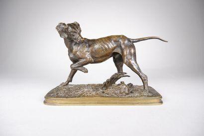 Ferdinand PAUTROT (1832-1874) Chien de chasse...