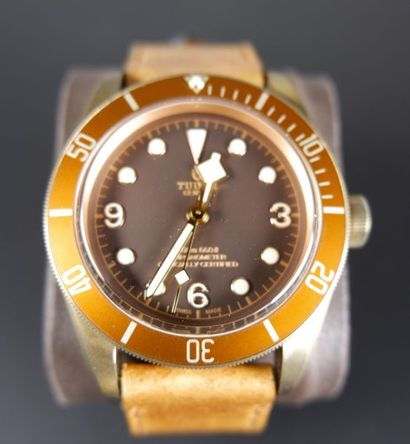 TUDOR. Montre chronomètre Back Bay Heritage...