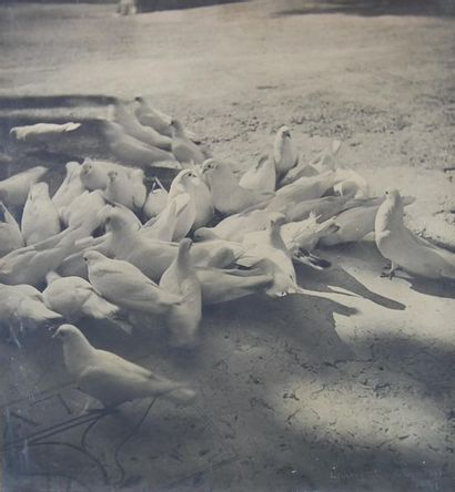 Laure ALBIN-GUILLOT (1879-1962). Colombes...