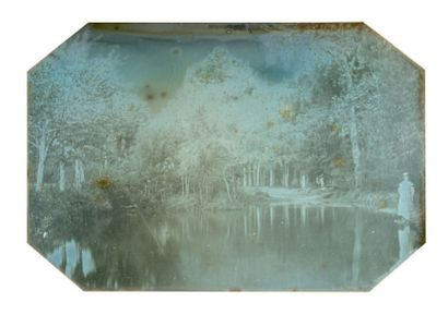 Alphonse de BREBISSON (Falaise 1798-1872) Jeune fille au bord d'une pièce d'eau Daguerréotype...