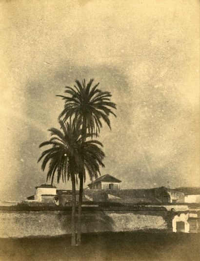 Émile PECARRERE (Pau 1816-Gelos 1904)