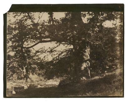 Gustave LE GRAY (Villiers-le-Bel 1820-Le Caire 1884) Groupe de personnes au pied...