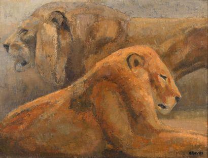 """Jean GRAVES (né en 1897) """"Deux Lions"""" Huile sur toile, signée en bas à droite, vers..."""