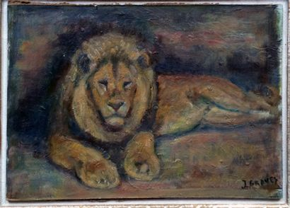 """Jean GRAVES (né en 1897) """"Lion couché"""" Huile sur papier encollée sur Isorel, signée..."""