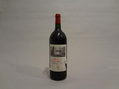 5 Magnums - Château Saint André Corbin, 1996, Saint-Georges Saint Emilion (5 étiquettes...