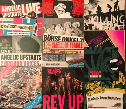 PUNK Lot de 29 disques 33 T de Punk et Oi. VG à EX/ VG à EX Set of 29 LP's of Punk...