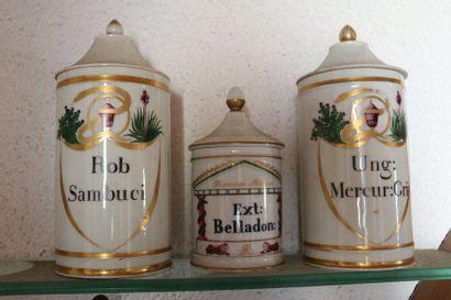 Paire de pots à pharmacie en porcelaine polychrome...