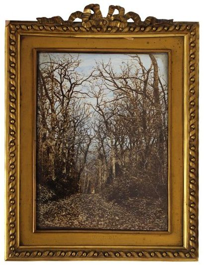 LAFON de CARMARSAC Pierre Michel (1821-1905)....