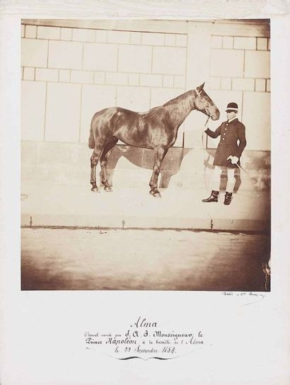 Eugène DISDERI (1819-1889). Alma, cheval...