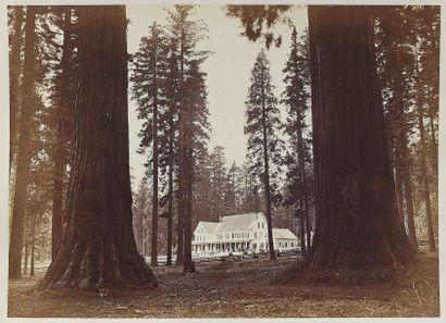 Carleton Eugene WATKINS (1829-1916). Mammoth...