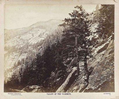 Eadweard J. MUYBRIDGE (1830-1904). Valley...