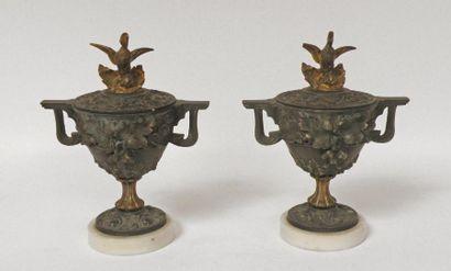 Paire de CASSOLETTES en bronze à deux patines...