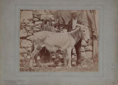 Adolphe BRAUN (1812-1877). Jeune fermier...