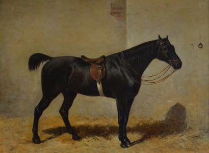 Théodore LAFFITTE (1816-c.1875) Portrait...