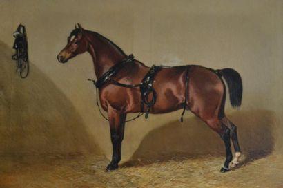 Louis Robert HEYRAULT (act.1840-1880) Portrait...