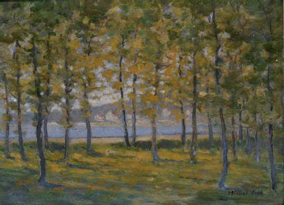 Auguste Michel COLLE (1872-1949) Sous-bois,...