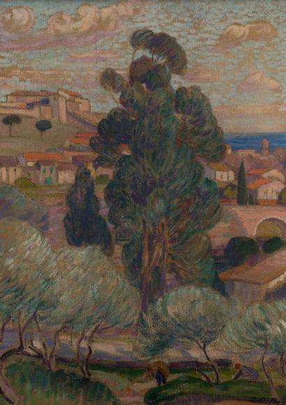 Léon DETROY (1857-1955). Paysage méditerranéen, la récolte des olives. Huile sur...