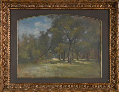 REIGNIER Claude-Marie (1870-1954). Sous-bois...