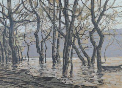 BROUILLARD Eugène (1870-1950). Arbres en...