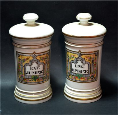 Two porcelain medicine jars with polychrome...