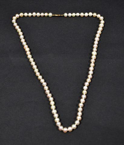 COLLIER de perles dites acoya à fermoir en...