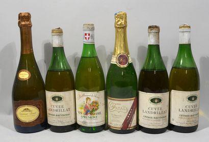 Lot de 6 bouteilles de vins divers dont mousseux,...