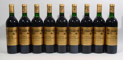 9 bouteilles de CHATEAU CANTENAC BROWN Margaux...