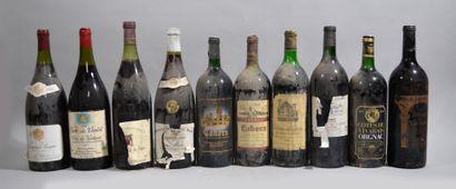 Lot de 10 magnums dont: Savigny les Beaunes...