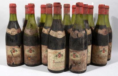 15 bouteilles de SANTENAY 1966 (capsules...