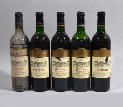 -10 bouteilles de Chateau de Gaudou CAHORS...