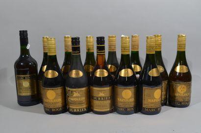 13 bouteilles FINE NAPOLEON.