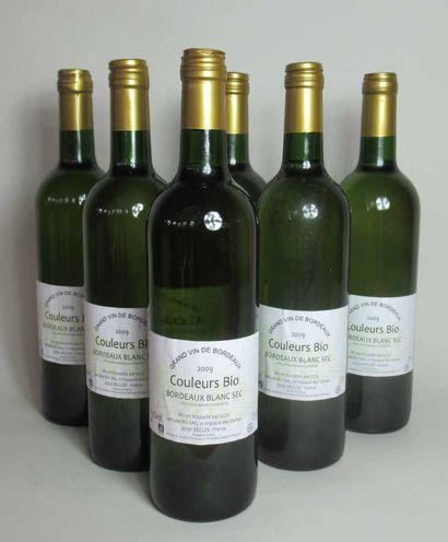 6 bouteilles de BORDEAUX Couleurs Bio BLANC...