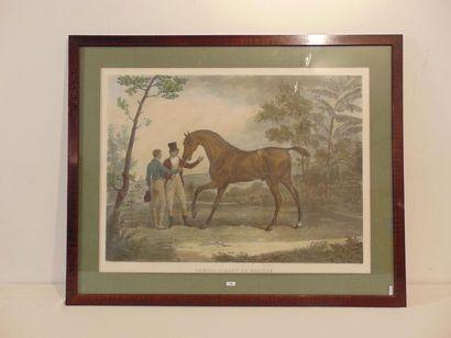 VERNET Carle (1758-1836) [d'après]