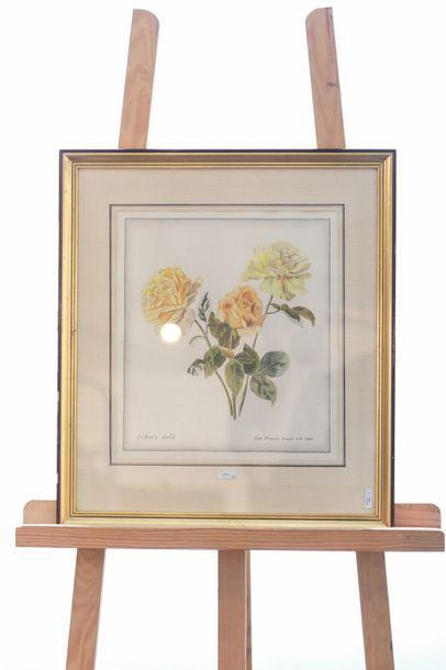 """CRUSAT Roger (1917-1994) """"Verger"""", XXe, huile sur papier marouflé sur carton, signée..."""