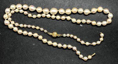 Collier de perles de culture légèrement baroques...