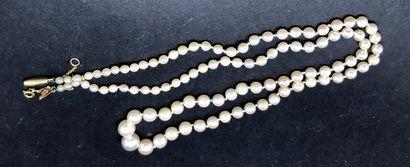 Collier de perles de culture en chute  Fermoir...