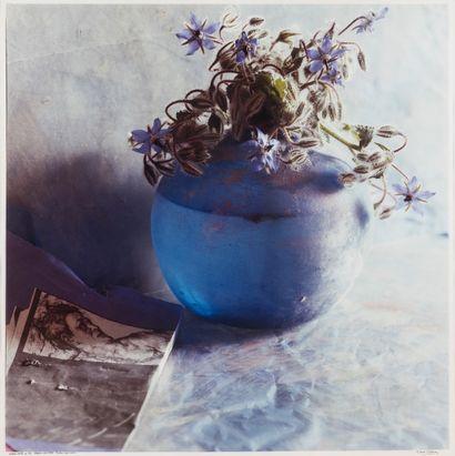 Toni CATANY (1942-2014)  Nature morte.  Photographie...