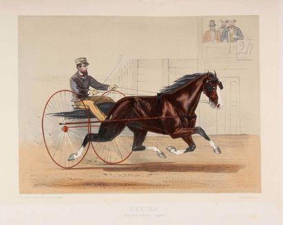 Centaure (Le)