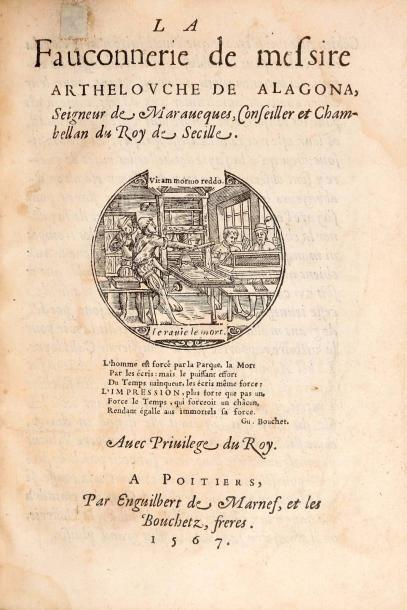 ARTHELOUCHE DE ALAGONA