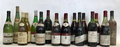 Lot de 14 bouteilles VINS DIVERS France:...