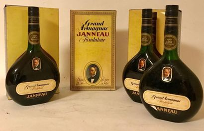 3 bouteilles GRAND ARMAGNAC - JANEAU Etuis...