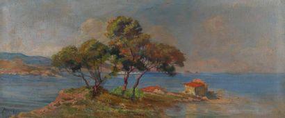 H.67 x 157 c. Ecole française, vers 1900. Les pins en bord de mer. Huile sur toile...