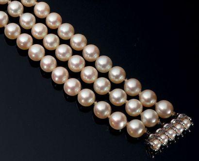 Bracelet à trois rangs de perles de culture....