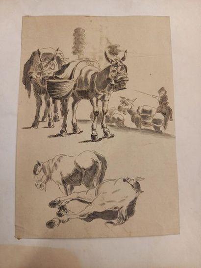 Mulets et chevaux Dessin 23 x 16.5 cm