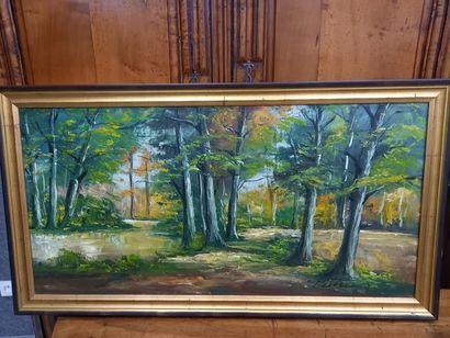 DESTREE paysage huile sur toile 49 x 98 ...